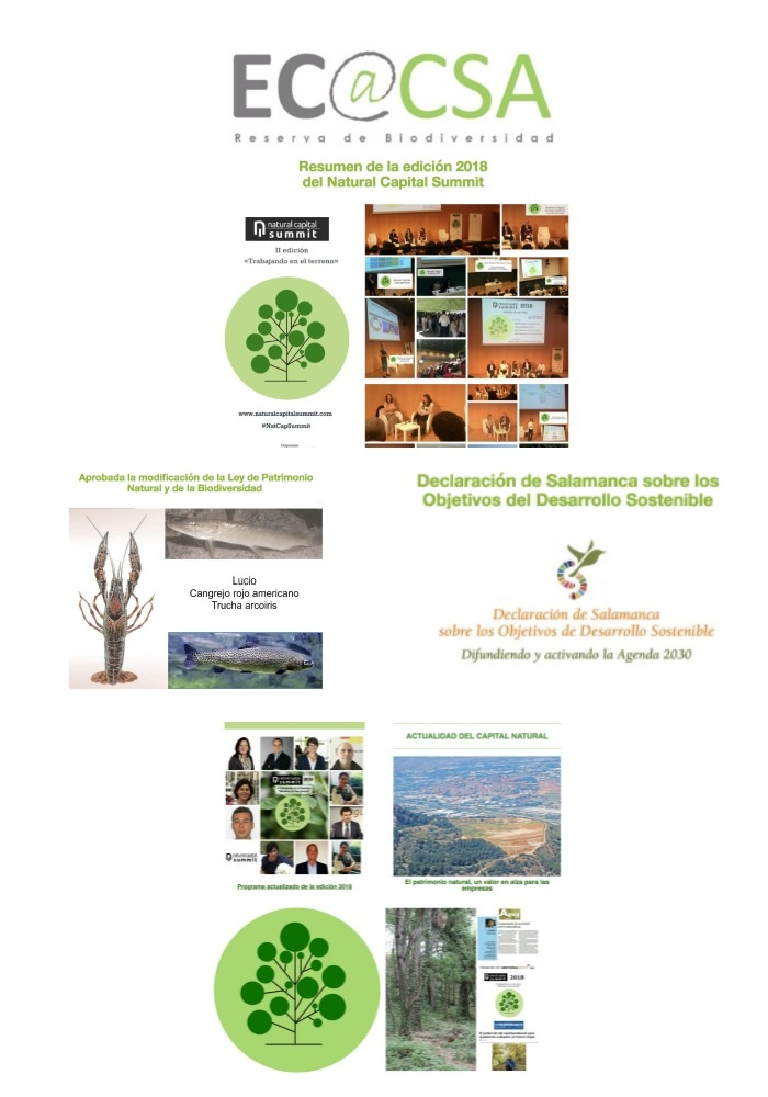 Boletín Ecoacsa - junio 2018