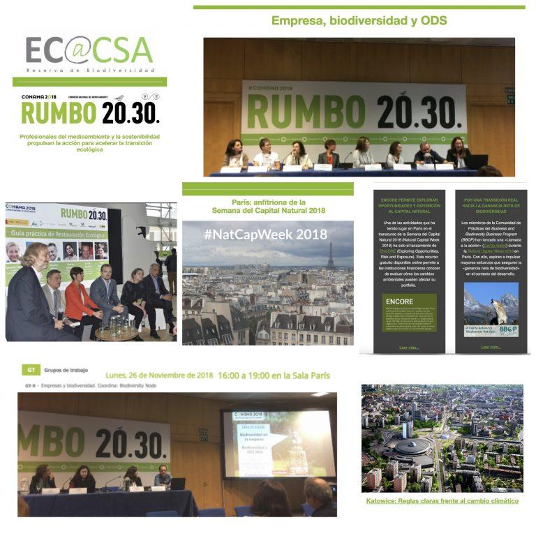 Boletín de noticias de Ecoacsa Reserva de Biodiversidad - noviembre de 2018