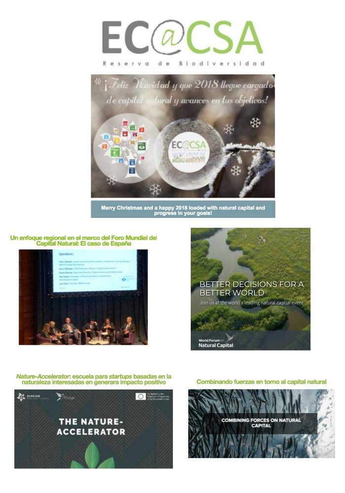 Boletín Ecoacsa - Diciembre 2017