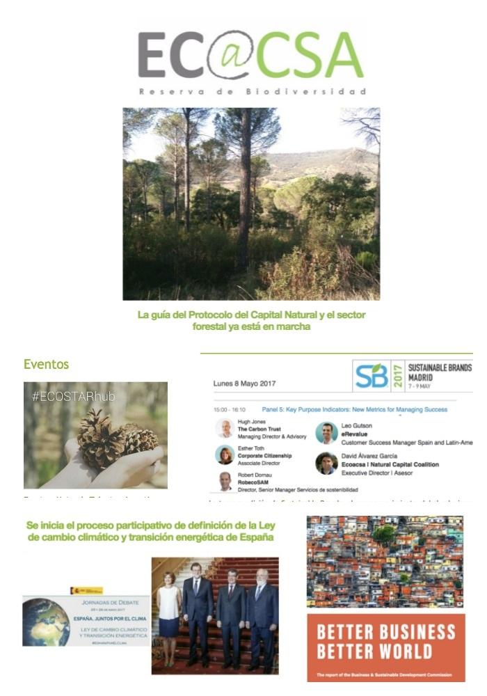 Boletín Ecoacsa - Junio 2017
