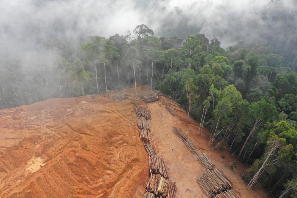 Deforestation.,Aerial,Photo,Of,Logging,In,Malaysia,Rainforest