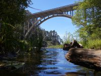 puente naturaleza